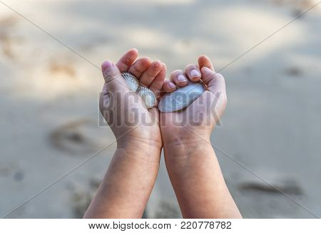 Close up child's hand holding seashell on a beach. or Close up Asian child's hands holdinf sea shell. Nature sun light. First person's view.
