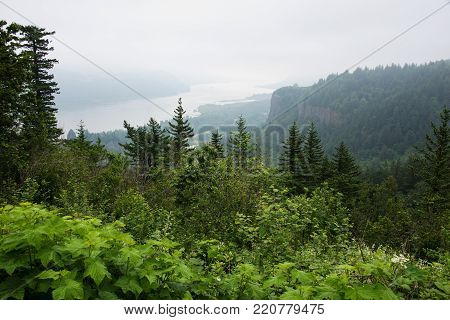 View over the Columbia River Valley at Chanticleer Point along the Historic Columbia River Highway Scenic Byway