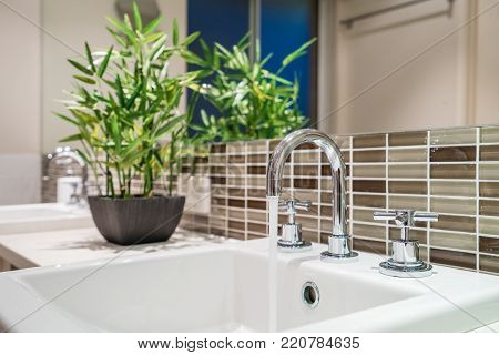 Close-up of bathroom square vanity in modern bathroom with small bamboo plant.