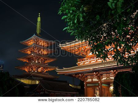 Beautifully illuminated Senso-ji temple complex by night in Asakusa, Tokyo, Japan