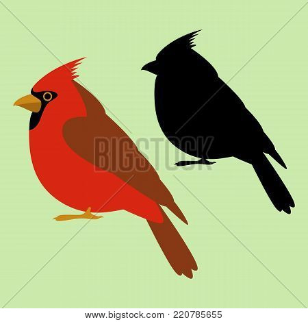 cardinal bird   vector illustration  black silhouette  flat style   profile side
