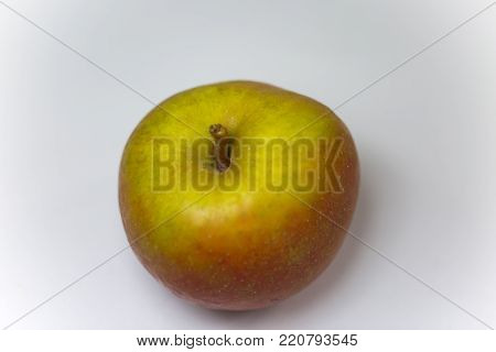boskop apple on white background, old , fruit