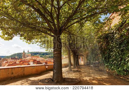 Sunlight beams shine through the crowns of the trees. The silhouette of Lesser Quarter of Prague on the background. With clock tower and the dome of St Nicholas Cathedral.