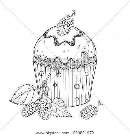 Vector outline cupcake with Mulberry or Morus ripe berry in black isolated on white background. Drawing of cake with mulberry in contour for summer, sweet food design or bakery and coloring book.