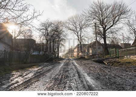 Village landscape, swamp and wet road, old houses and trees around, road theme, countryside path, sunlight, Western Ukraine