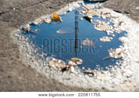 A Puddle Of Water On The Road Surface (asphalt) With Dry Leaves