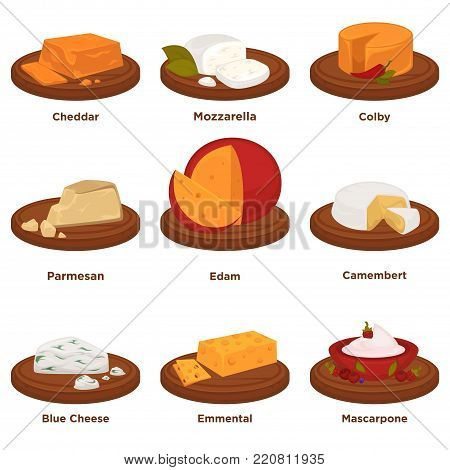 Tasty cheddar, aromatic mozzarella, spicy colby, hard parmesan, hue head of edam, tender camembert, salty blue cheese, fresh emmental and thick mascarpone on wooden trays vector illustrations.