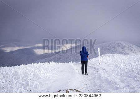 A hiker braves the frigid winter temperatures high atop the Roan highlands on the Appalachian Trail in the western North Carolina Blue Ridge Mountains.
