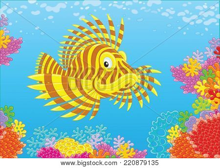 A striped scorpionfish swimming in blue water over a colorful coral reef in a tropical sea, a vector illustration in cartoon style
