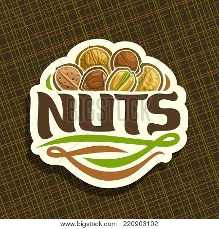 Vector logo for Nuts, cut sign with pile of healthy walnut, australian macadamia nut, sweet almond, forest hazelnut, cracked pistachio, peanut in nutshell, veg mix label with text nuts for vegan store