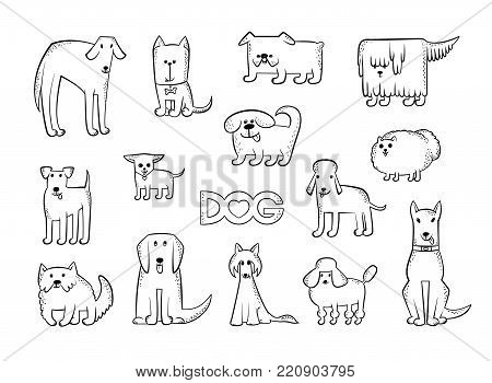 Vector set of different dog breeds. Funny caricature animals characters. Contour isolated black and white sketch illustration. The inscription and heart poster