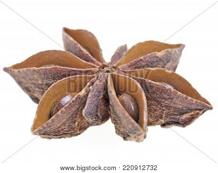 Single grain of anise on white background