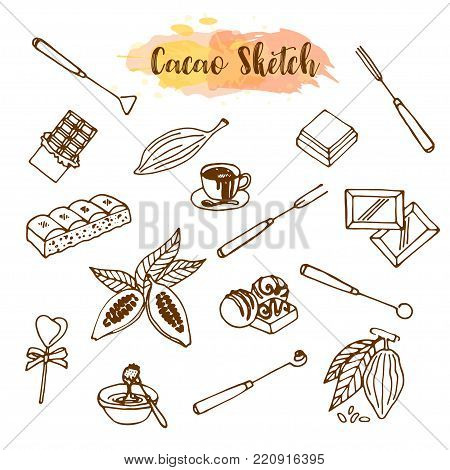 Chocolate cacao sketch. Design menu for restaurant, shop, confectionery, culinary, cafe, cafeteria, bar. Cocoa beans line icon or emblem. Vector illustration