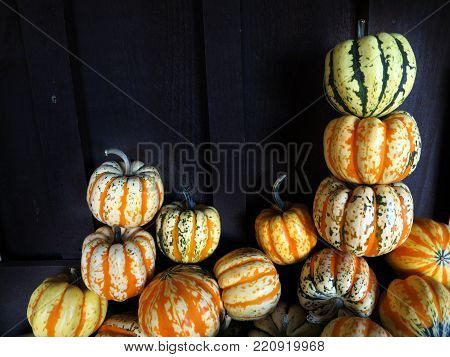 Multi colored, multiple neatly stacked carnival squash