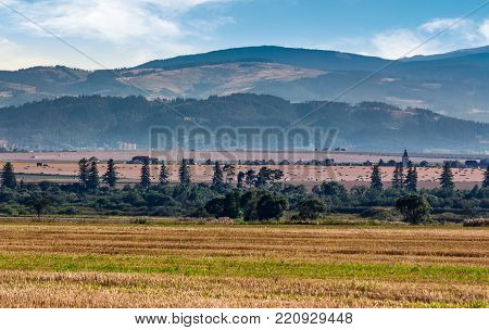 agricultural fields of Slovakia. beautiful agrarian countryside landscape