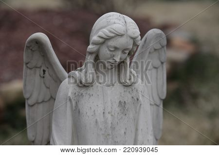 Cemetery statue, young female angel, wings spread, looking downward, dark background.