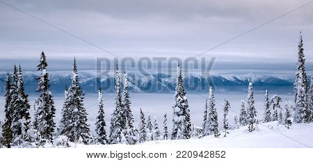 TThe Mission Mountains holds the low lying clouds and water of Flathead Lake to the east as seen through the snow flocked trees up on Blacktail Mountain.