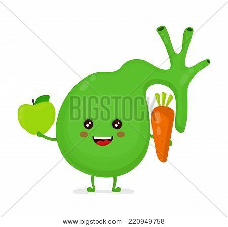 Strong healthy happy gallbladder with apple and carrot character. Vector flat cartoon illustration icon design. Isolated on white background. Human gallbladder nutrition concept