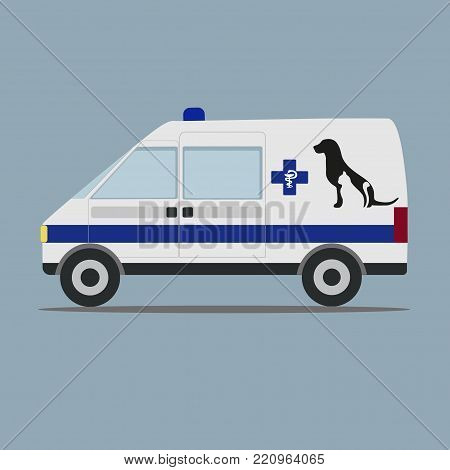 Car veterinary aid on a white background