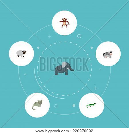 Icons flat style cat, sheep, monkey and other vector elements. Set of alive icons flat style symbols also includes kine, reptile, chimpanzee objects.