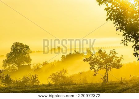 Amazing nature landscape with trees, vineyards and country house in morning fog. Autumn scenic landscape of South Moravia in Czech Republic.