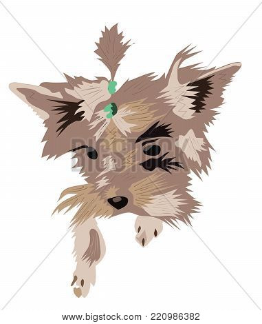 funny, smart, loving friend. shaggy, curly head of brown dogs. modern, colored, vector illustration of dog on white background