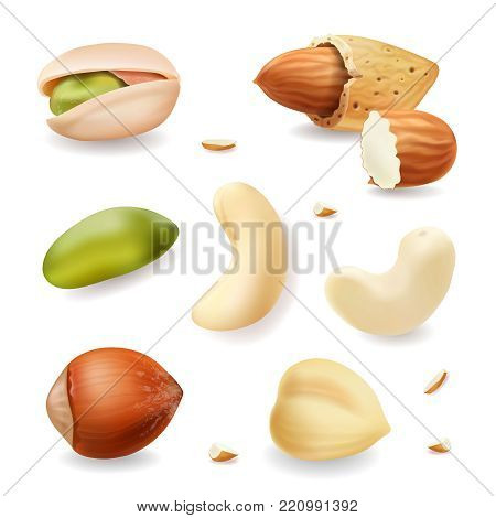 Nuts realistic vector set isolated on white background. hazelnut, pistachio, almond, cashew nuts.