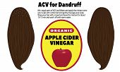 ACV for dandruff vector illustration on a white background poster