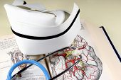 Nurse's hat, stethoscope, and anatomy book. poster