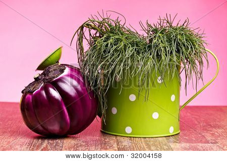 Agretti And Round Eggplant