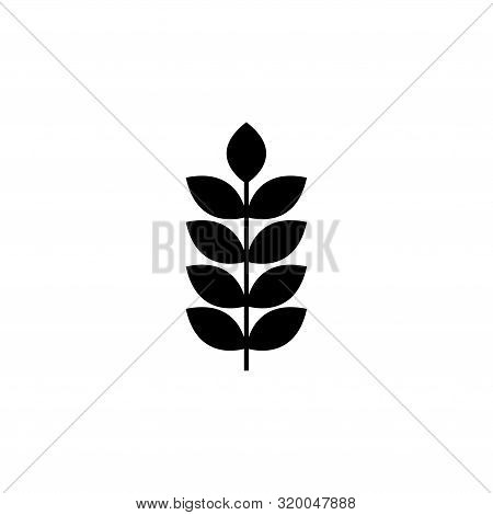 Grain Ear, Seed Spike, Wheat. Flat Vector Icon Illustration. Simple Black Symbol On White Background