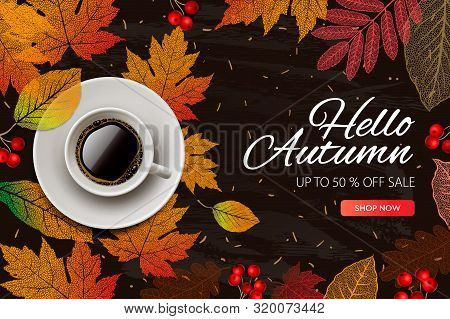 Autumn Sale. Fall Season Sale And Discounts Banner, Vector Illustration. Autumn, Fall Leaves, Hot St