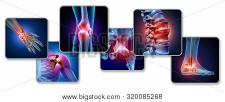 Pain Of The Joints Concept As Skeleton And Muscle Anatomy Of The Body With A Group Of Sore Joints As