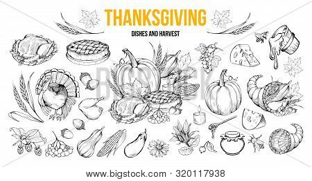 Thanksgiving Coloring Book Illustrations Set. Traditional Autumn Holiday Celebration Hand Drawn Symb