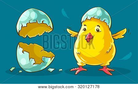 Chicken Baby Hatched From Egg. Yellow Nestling Domestic Bird Near Shells Of Eggs. Flying Feathers Ar