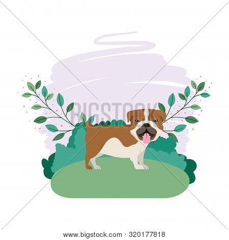 Cute Bulldog Ingles Dog With Background Landscape Vector Illustration Design
