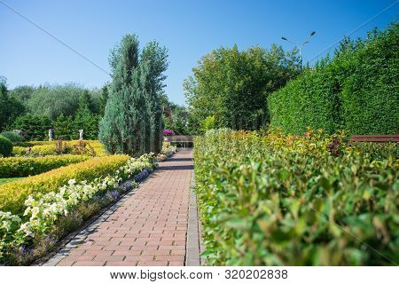 Cobblestone Path In The City Park Between Green Bushes, Flowers And Trees, Blue Sky And Benches In T
