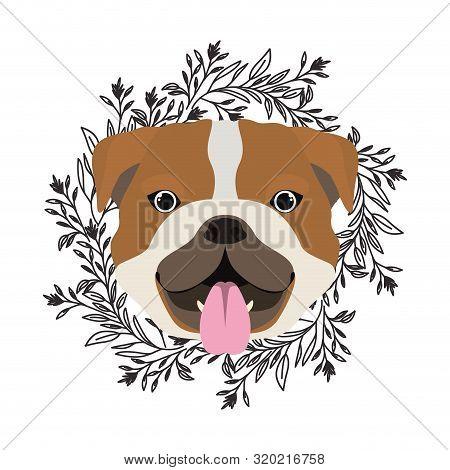 Head Of Cute Bulldog Ingles Dog On White Background Vector Illustration Design
