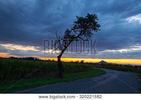 On The Empty Road Between Fields Before Harvesting At Dramatic Sunter.  On The Horizon Silhouette Of