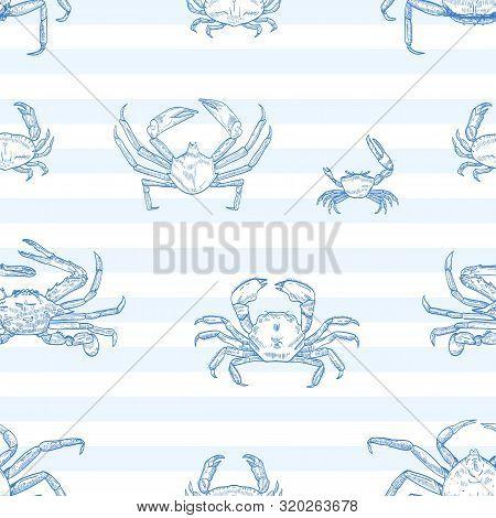 Crayfish Vector Seamless Pattern. Sea Animals, Marine Crabs On Striped Background. Restaurant Seafoo