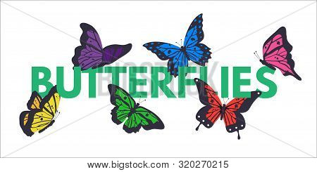 Butterflies Color Vector Banner With Copyspace. Tropical Insects Flying In Garden. Red And Yellow Bu