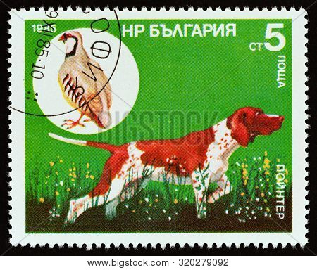 Bulgaria - Circa 1985: A Stamp Printed In Bulgaria From The