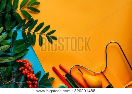 Yellow Background With Shool Supplies And Ashberry