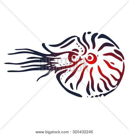 Seashell Nautilus. Doodle Sea Shell. Marine Life Ornament