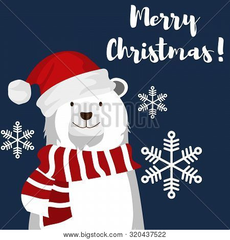 Christmas Holiday Season Background Of Cute Polar Bear With Santa Hat And Snowflakes Under Merry Chr