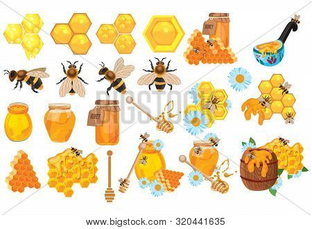 Honey Set. Collection Of Beekeeping. Cartoon Apiary Set. Illustration Of Beehive, Bees And Honeycomb
