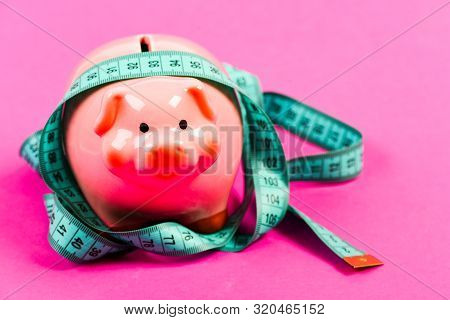 Budget Limit Concept. Credit Loan Debt. Financial Consulting. Economics And Finances. Pig Trap. Budg