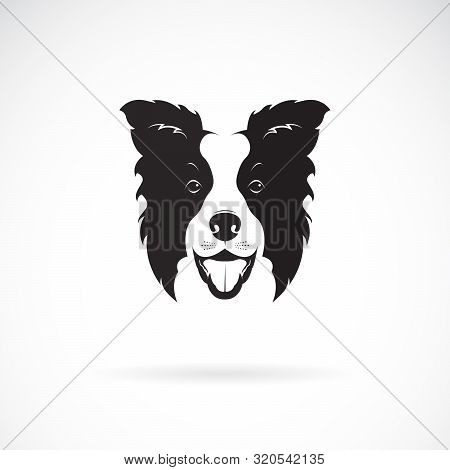 Vector Of A Border Collie Dog On White Background. Pet. Animal. Dog Logo Or Icon. Easy Editable Laye