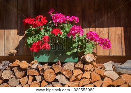 Flower Box With Red And Pink Geranium On Stacked Firewood In Front Of A Rural Wooden Farmstead
