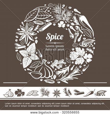 Sketch Spices Round Monochrome Concept With Star Anise Mint Bay Leaf Cloves Ginger Rosemary Cinnamon